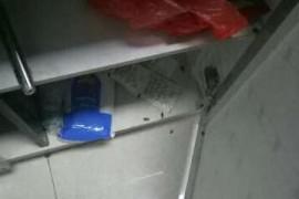 厨房的橱柜里蟑螂哪里来的