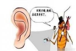 蟑螂为什么喜欢钻进人的耳朵呢?