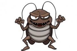 为什么喷了杀虫剂蟑螂还是不死?