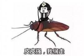 有纱窗蟑螂是怎么进入家里的