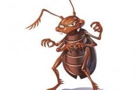 如何把躲在缝隙里的蟑螂快速逼出来