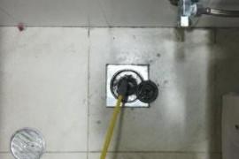 厕所有蟑螂是从地漏出来的吗