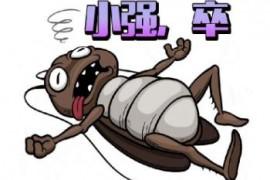 屋里蟑螂用什么办法能把它消灭